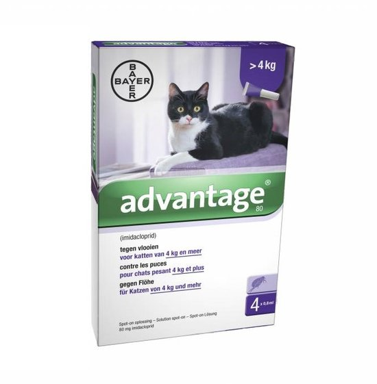 Bayer Advantage Kat 80 > 4 kg - 4 Pipetten