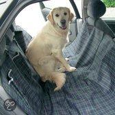 Top 10 hondenspullen voor onderweg