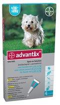 Advantix hond 100 (van 4 - 10 kg) - 1 st à 4 Pipetten