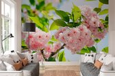 W&G Behang Sakura bloesem - 8-delig fotobehang  - 366 × 254 cm - no. 23624