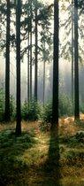 Fotobehang, Deurposter, Bos, Natuur, 90 x 200 cm. Art. 97599
